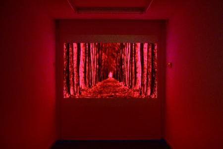 Richard Bolhuis, Xuanxue, installation view Marian Cramer Projects