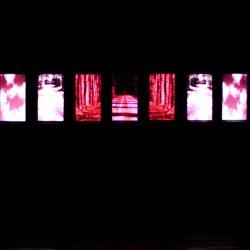 Richard Bolhuis - installation view 15